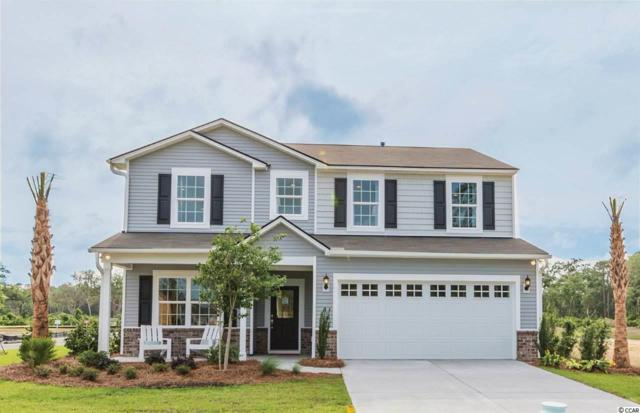 436 Black Cherry Way, Conway, SC 29526 (MLS #1913820) :: Sloan Realty Group