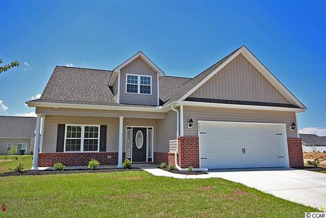 149 Palm Terrace Loop, Conway, SC 29526 (MLS #1913835) :: The Litchfield Company