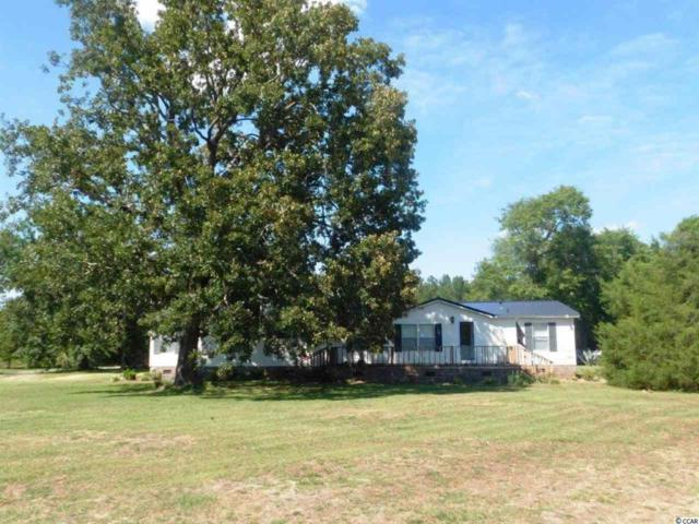 1802 Oak Dale Rd., Loris, SC 29569 (MLS #1913840) :: Sloan Realty Group
