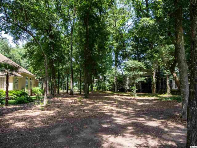 Lot 64 Widgeon Dr., Pawleys Island, SC 29585 (MLS #1913953) :: The Litchfield Company