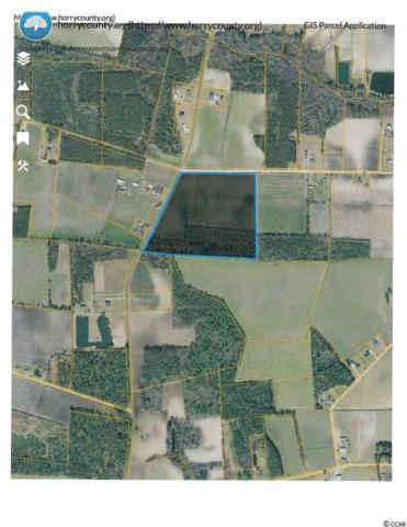 TBD Edwards Rd., Aynor, SC 29511 (MLS #1914078) :: The Hoffman Group