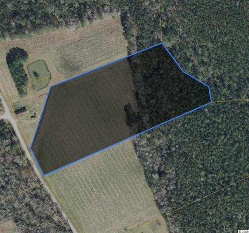 Tract C Dukes Rd., Conway, SC 29526 (MLS #1914136) :: Jerry Pinkas Real Estate Experts, Inc