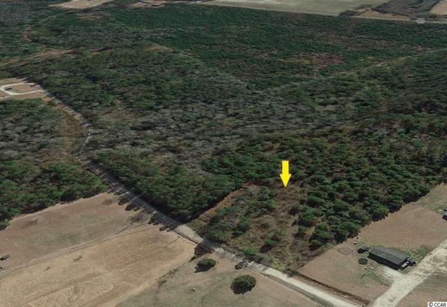 Lot 5 Long Horne Ranch Dr., Loris, SC 29569 (MLS #1914170) :: The Hoffman Group