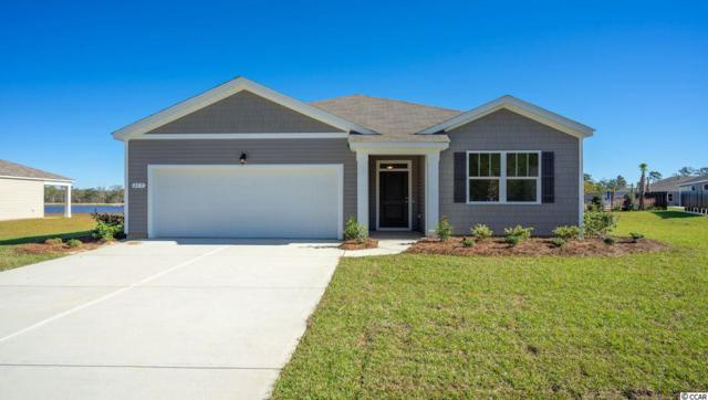 353 Carmello Circle, Conway, SC 29526 (MLS #1914264) :: The Hoffman Group