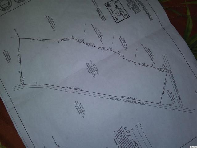 0 N Pee Dee Rd., Nichols, SC 29581 (MLS #1914422) :: The Hoffman Group