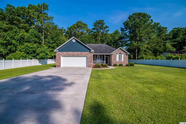 328 George Washington Trail, Georgetown, SC 29440 (MLS #1914561) :: The Lachicotte Company