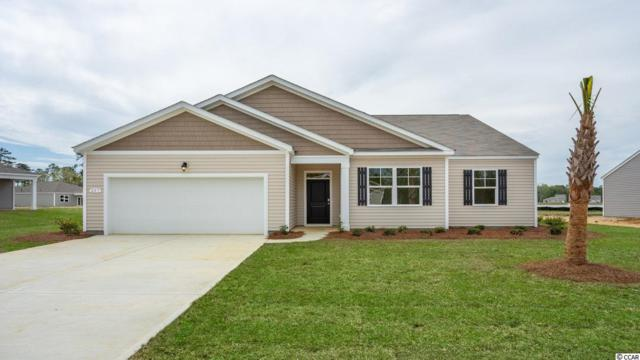 371 Carmello Circle, Conway, SC 29526 (MLS #1914575) :: The Hoffman Group