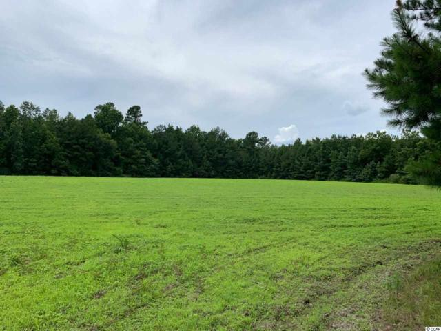 tbd Mcmillan Rd., Greeleyville, SC 29056 (MLS #1914717) :: The Hoffman Group