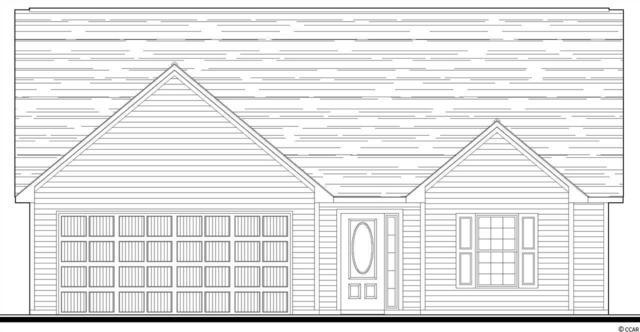 283 Oak Landing Dr., Conway, SC 29527 (MLS #1915188) :: Jerry Pinkas Real Estate Experts, Inc