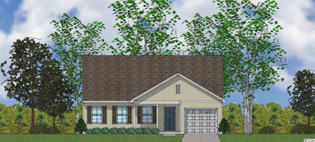 332 Angler Ct., Conway, SC 29526 (MLS #1915278) :: The Hoffman Group