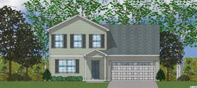 336 Angler Ct., Conway, SC 29526 (MLS #1915309) :: The Hoffman Group