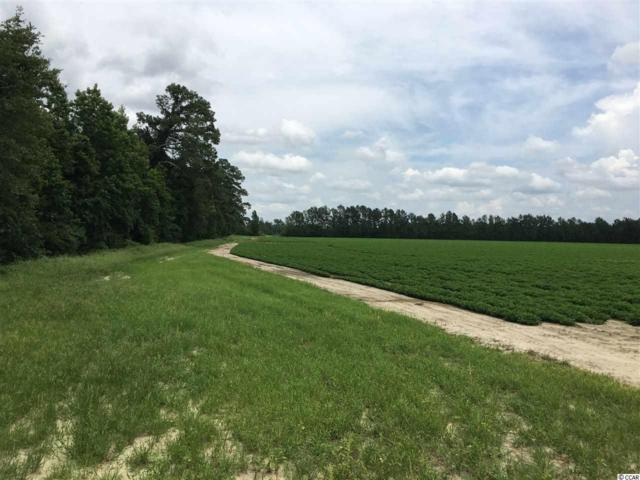 TBD Huckleberry Rd., Galivants Ferry, SC 29544 (MLS #1915312) :: The Litchfield Company