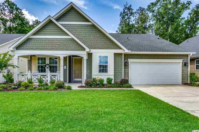 1981 Oxford St., Myrtle Beach, SC 29577 (MLS #1915329) :: The Greg Sisson Team with RE/MAX First Choice