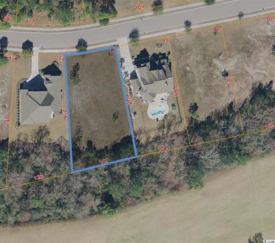1228 Wood Stork Dr., Conway, SC 29526 (MLS #1915387) :: The Lachicotte Company