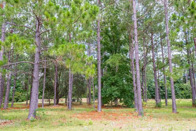 1457 Whooping Crane Dr., Conway, SC 29526 (MLS #1915495) :: The Hoffman Group