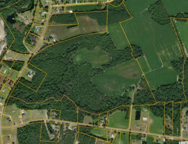TBD Daisy Rd., Loris, SC 29569 (MLS #1915521) :: Right Find Homes
