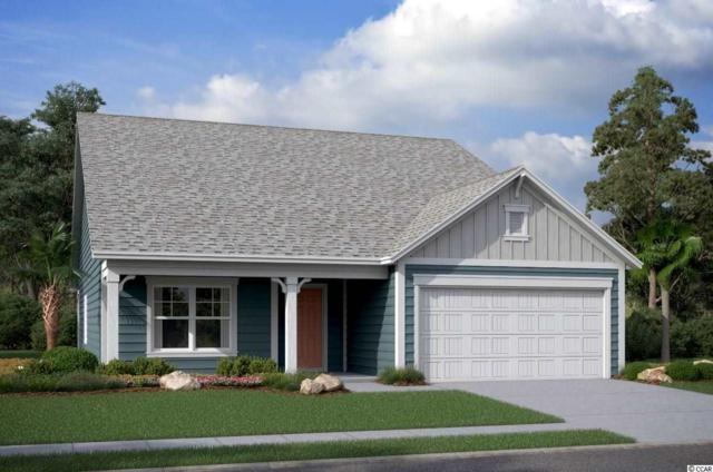 569 Oyster Dr., Myrtle Beach, SC 29588 (MLS #1915593) :: The Lachicotte Company
