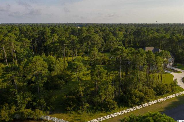 Lot 2 Holly Berry Ct., Myrtle Beach, SC 29579 (MLS #1915693) :: The Lachicotte Company
