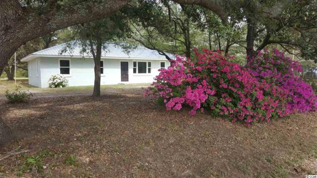 1991 Ray Rd., Hemingway, SC 29554 (MLS #1915700) :: The Hoffman Group