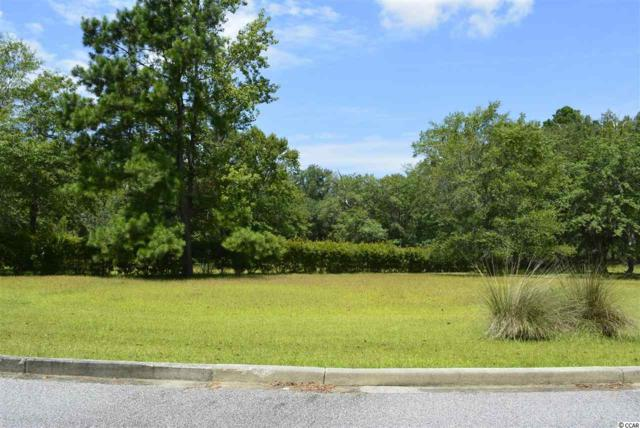6 Shackleford Park Loop, Georgetown, SC 29440 (MLS #1915759) :: The Hoffman Group