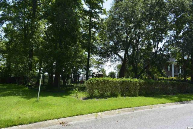 17 Shackleford Park Loop, Georgetown, SC 29440 (MLS #1915775) :: The Hoffman Group