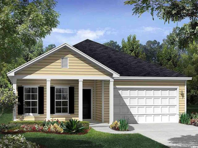 811 Summer Starling Pl., Myrtle Beach, SC 29577 (MLS #1915850) :: Right Find Homes