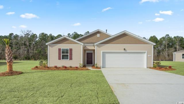 628 Coquina Bay Dr., Conway, SC 29526 (MLS #1915856) :: The Hoffman Group