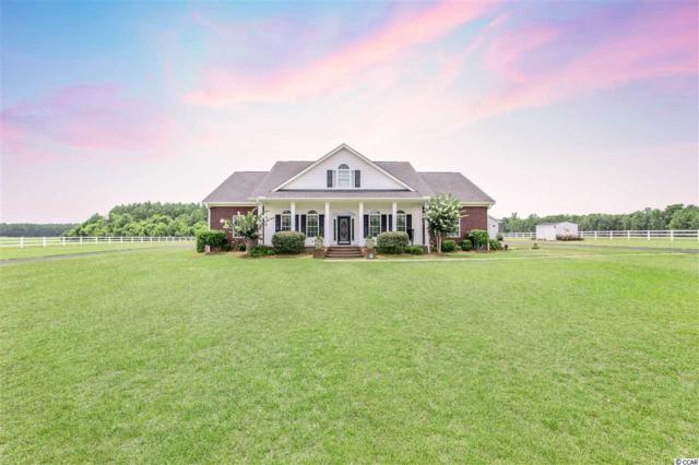 6837 Highway 134, Conway, SC 29527 (MLS #1915940) :: The Hoffman Group