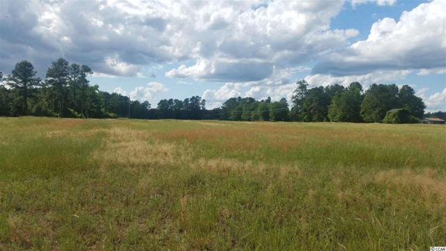 TBD Highway 19, Conway, SC 29526 (MLS #1916142) :: The Litchfield Company