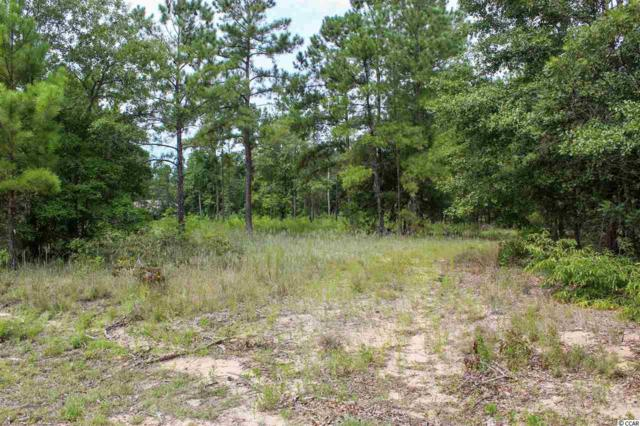 Caine Landing NE Shell Community, Conway, SC 29526 (MLS #1916882) :: The Litchfield Company