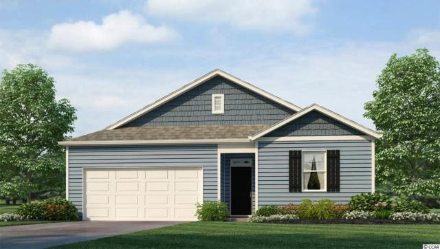 648 Coquina Bay Dr., Conway, SC 29526 (MLS #1916903) :: The Litchfield Company