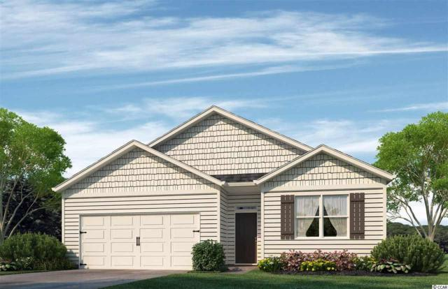 624 Coquina Bay Dr., Conway, SC 29526 (MLS #1916909) :: The Litchfield Company