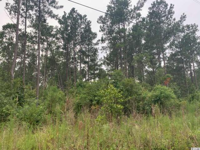45.3 acre Old Cemetary Rd., Andrews, SC 29510 (MLS #1916915) :: The Hoffman Group