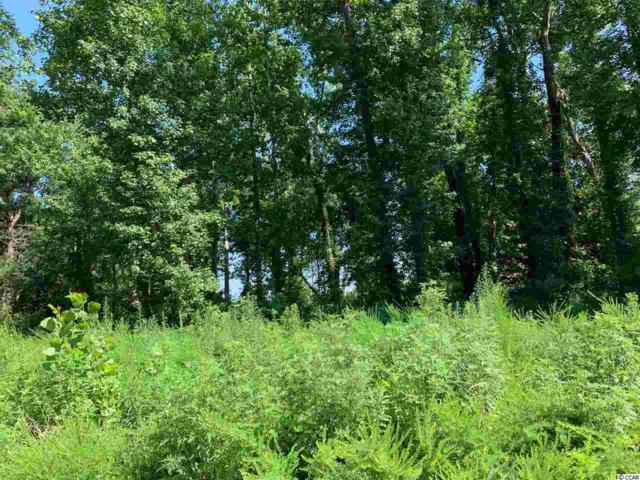 140 Bay Ridge Dr., Little River, SC 29566 (MLS #1917119) :: Jerry Pinkas Real Estate Experts, Inc