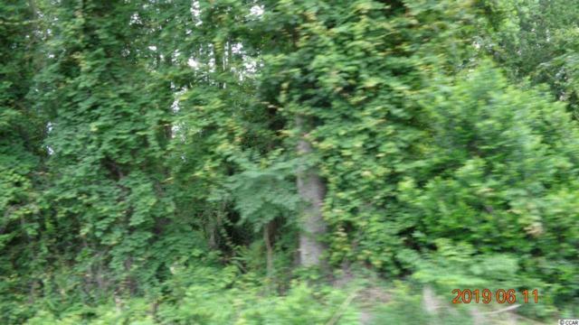 523 Highway 90, Conway, SC 29526 (MLS #1917241) :: The Hoffman Group