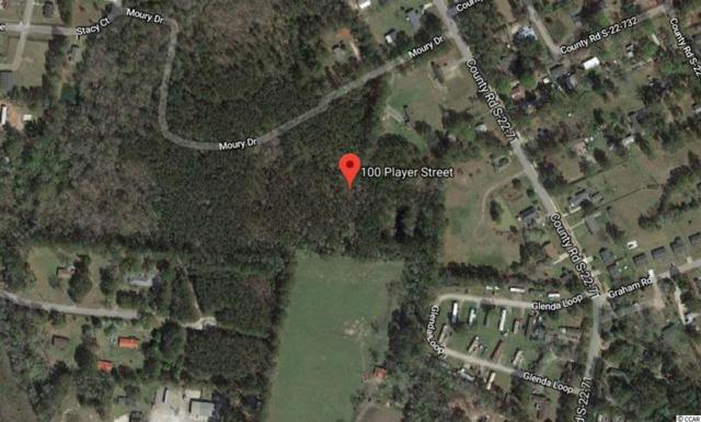 100 Player St., Georgetown, SC 29440 (MLS #1917308) :: The Litchfield Company