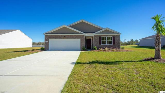 664 Coquina Bay Dr., Conway, SC 29526 (MLS #1917716) :: The Litchfield Company