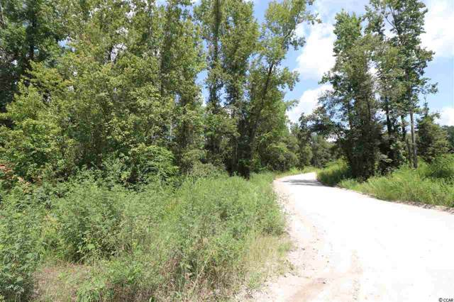 TBD Cannon Rd., Galivants Ferry, SC 29544 (MLS #1918751) :: The Litchfield Company