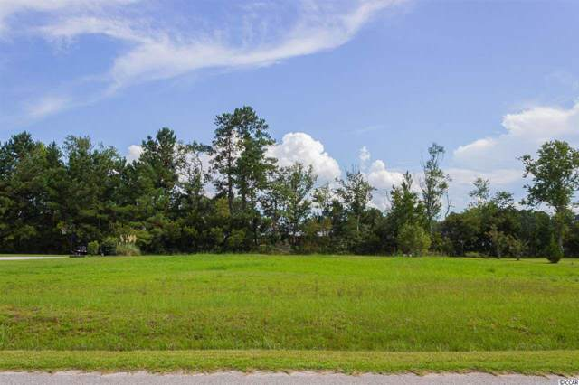 160 Highmeadow Ln., Aynor, SC 29511 (MLS #1918848) :: The Litchfield Company