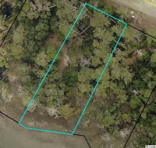 Lot 3 Stamper Trail, Pawleys Island, SC 29585 (MLS #1919060) :: The Lachicotte Company