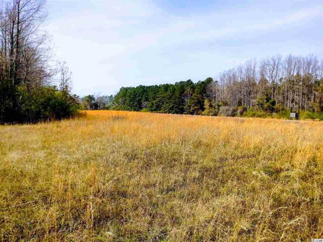 TBD acres Highway 348, Loris, SC 29569 (MLS #1919102) :: Right Find Homes