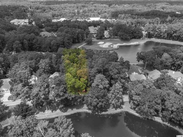 47 Green Wing Teal Ln., Pawleys Island, SC 29585 (MLS #1919354) :: The Hoffman Group