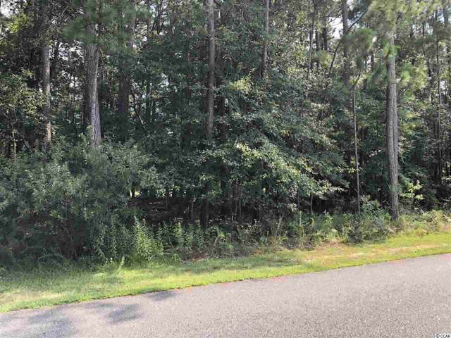 1244 Francis Parker Rd., Georgetown, SC 29440 (MLS #1919417) :: The Lachicotte Company