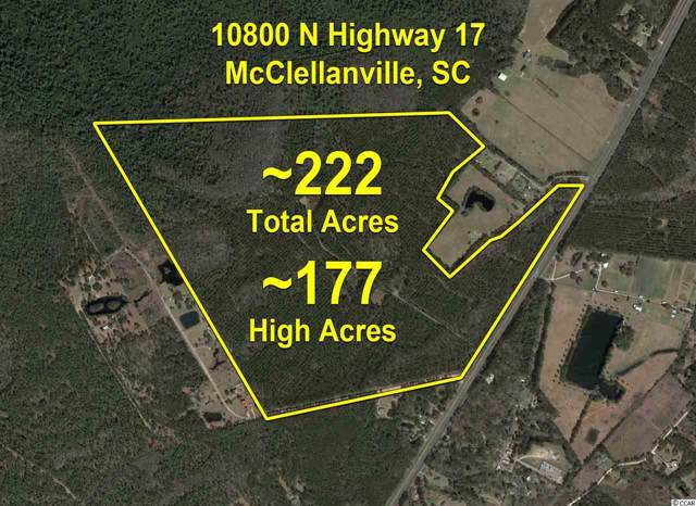 10800 Highway 17 North, McClellanville, SC 29458 (MLS #1919801) :: The Hoffman Group