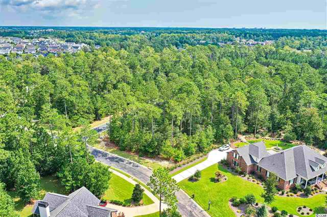 155 Camp Hill Circle, Murrells Inlet, SC 29576 (MLS #1919836) :: The Hoffman Group