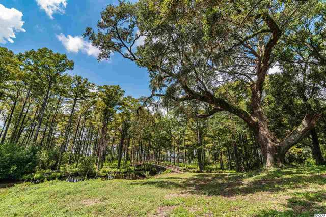 Lot B Old Waccamaw Dr., Pawleys Island, SC 29585 (MLS #1919865) :: Garden City Realty, Inc.