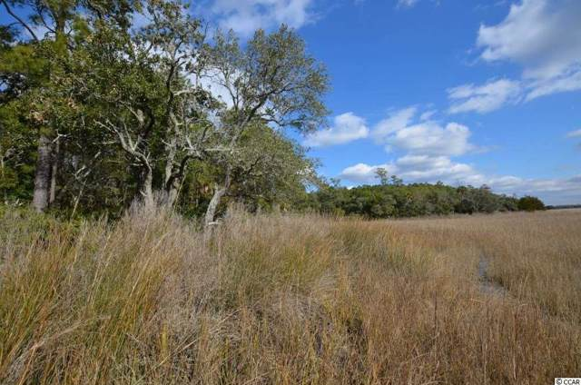 9800 Two Pines Rd., McClellanville, SC 29458 (MLS #1919977) :: The Litchfield Company