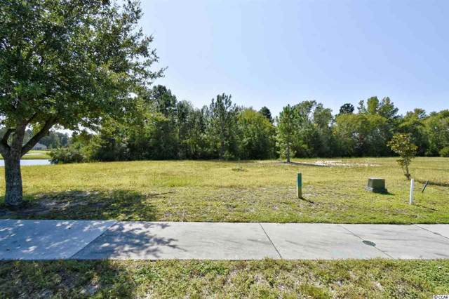 1244 Wood Stork Dr., Conway, SC 29526 (MLS #1920249) :: Jerry Pinkas Real Estate Experts, Inc