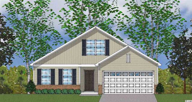 360 Angler Ct., Conway, SC 29526 (MLS #1920331) :: The Trembley Group