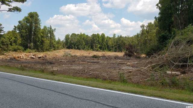 TBD Pleasant Plains Church Rd., Whiteville, NC 28472 (MLS #1920333) :: The Lachicotte Company